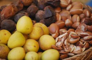 Argan_Oil_Nut benefits of Argan oil